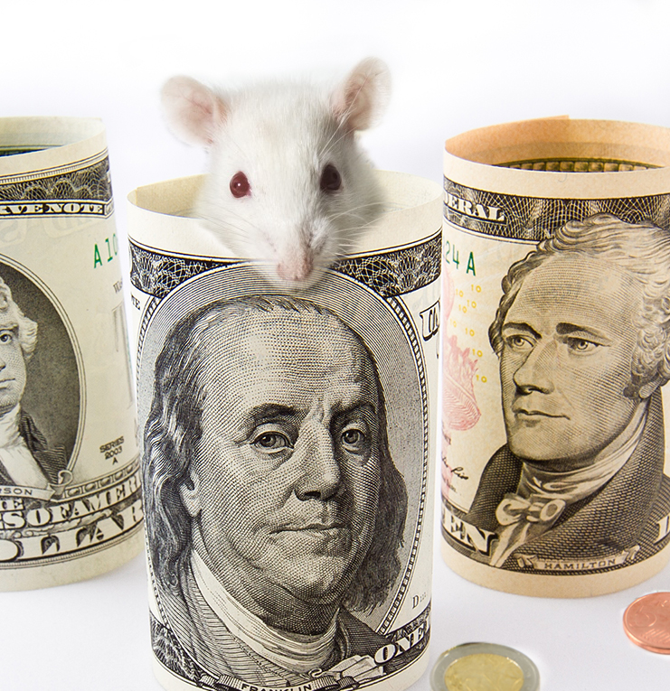 Betaling via Mobile Pay eller Netbank